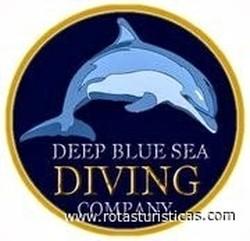 Deep blue sea diving center dubai emirados rabes unidos - Deep blue dive centre ...