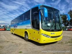 Bus Sur