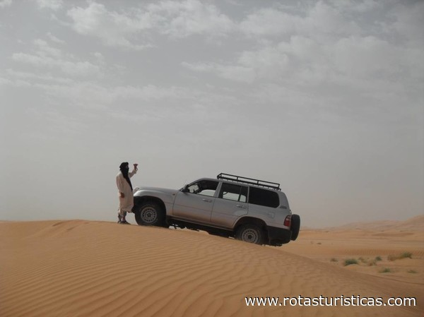 Dunes Expedition
